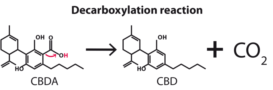 decarboxylation processus